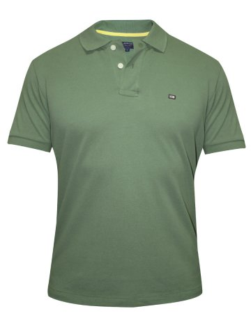 https://static7.cilory.com/138672-thickbox_default/arrow-green-polo-tshirt.jpg