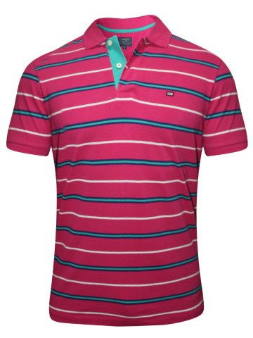 https://static9.cilory.com/178171-thickbox_default/arrow-pink-polo-stripes-t-shirt.jpg