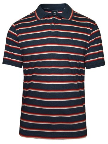 https://static9.cilory.com/193754-thickbox_default/peter-england-navy-stripes-t-shirt.jpg