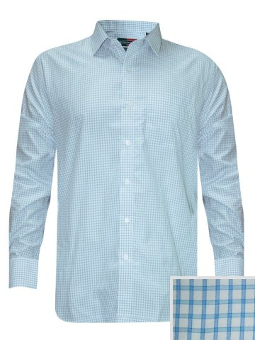 https://static5.cilory.com/200312-thickbox_default/peter-england-sky-blue-formal-checks-shirt.jpg