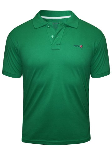 https://static3.cilory.com/213599-thickbox_default/pepe-jeans-green-polo-t-shirt.jpg