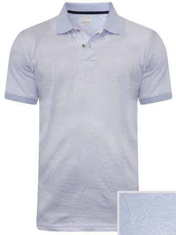 https://static9.cilory.com/297624-thickbox_default/peter-england-light-blue-polo-t-shirt.jpg