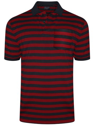 https://static6.cilory.com/318392-thickbox_default/peter-england-red-navy-pocket-polo-t-shirt.jpg